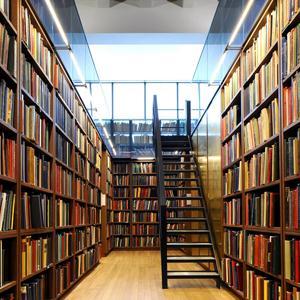 Библиотеки Батайска